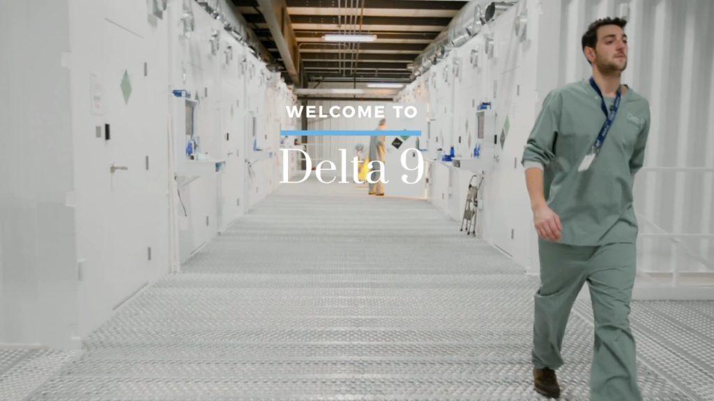 Delta 9 Cannabis Thumbnail